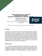 HIDRÓLISIS ÁCIDA DE LA CELULOSA MAGNITUD DEL PROBLEMA,SOLUCIÓN Y EXTENSIÓN DE LA VIDA ÚTIL DEL PAPEL.pdf