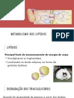 Bioquímica - Aula 12 - Metabolismo Dos Lipídios