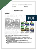 CONSULTA 1 HIDROLOGIA.pdf
