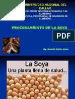 SOYA (1)