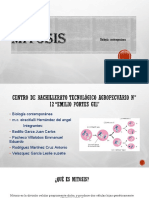 Mitosis Cbta 12 6B