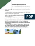 Acciones Que Se Realizan en Guatemala Para Cuidar Las Fuentes y Cuerpos de Agua