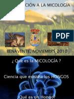 presentación IV JORNADAS MICOLOGICAS ESCOLARES