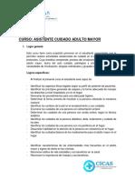 SILABUS CUIDADO ADULTO cicas 2019.docx