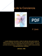 Optimized Conciencia 1 semestre 2008  F Ceric.ppt