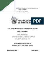 DocsTec_6521.pdf