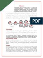 Trabajo_de_Division_Celular_o_Mitosis.docx