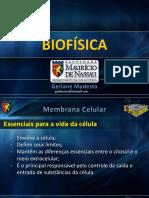 BIOF 2. Membrana Estrutura Função