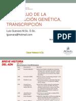 Clase 12 DNA Transcripción 2017