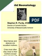 Steve Purdy DVM logy