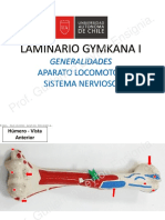 Laminario Gymkana I - UA LLANO 2018