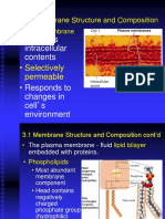 Chapter 3_Membrane Physiology - Copy.ppt