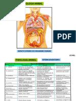 fisiologiaanimalcomparada-versoparaaula-140204150722-phpapp02-convertido.pptx