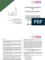 Guias_preparacion_Examen_simulacion_1er_Sem_BADI.pdf