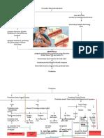 Pathway Hemofilia
