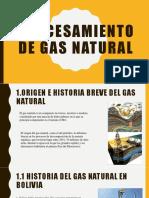 Procesamiento de Gas Natural Exposicion