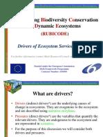 RUBICODE WP3 Drivers of Change (1)