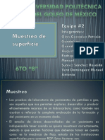 96260872-Muestreo-de-Superficie.pptx