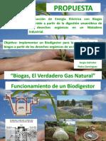 Proyecto BIOGAS en Matadero Industrial
