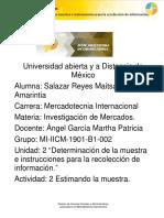 IICM_U2_A2_.docx