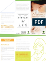 Plegable Lactancia Materna 20141 (1)