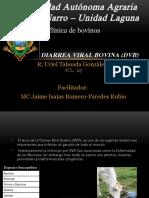 Diarrea Viral Bovina (DBV)