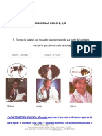 Homófonas Con Csxz Actualizada_juannarvaez