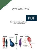 23 - Sistemas sensoriales