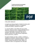 Fitofarmacos Naturales Limpieza Pulmonar