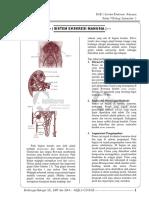 Kelas 9 Biologi Bab 1 Sistem Ekskresi Manusia KTSP Full Version