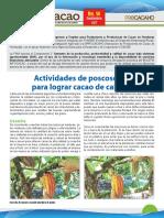 InfoCacao_No14_Sept_2017.pdf