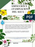Disminucion y Contaminacion Del Agua