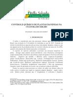 palestra04.pdf