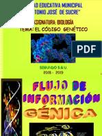 1.ADN