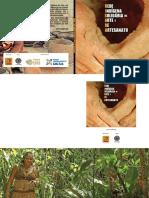 Indigenas PDF MEC