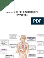 Endocrine (4)