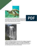 151606289-RESERVAS-NATURALES-DE-CENTROAMERICA-docx.docx