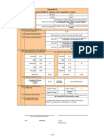 r - 01 Formatos Riesgos - Segu. y Control Obra