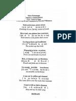 Salut Printemps IPA and Translation