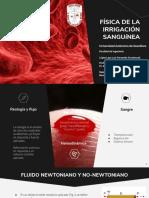 Física de La Irrigación Sanguínea