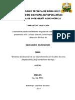 Monografia Valero