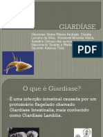 Giardiase Slide