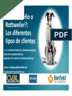 Chihuahueño o Rotweiller Los Diferentes Tipos de Clientes