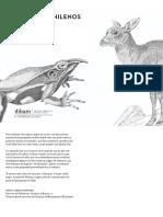 Animales Chilenos en Peligro de Extincion