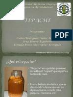 Bioología y bioquímica del tepache.pdf