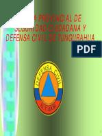 Manejo de Desastres Guia Provincial