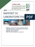 Rapport de Laboratoire Public Said