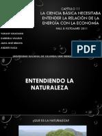 EXPO Capítulo 11.pptx