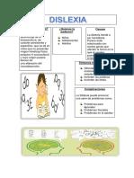 infografia dislexia