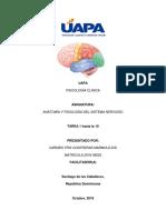 Anatomia Para El Examen- Carmen Yris Contreras